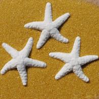 """3"""" Starfish Pack (3 per box)"""