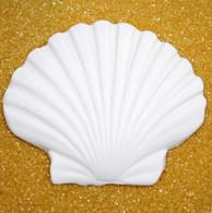 """3.5"""" Clam Shell (2 per box)"""