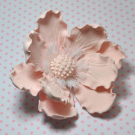 "4"" Elegant Anemone - Pale Pink (Sold Individually)"