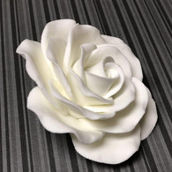 "3.5"" Queen Elizabeth Rose - White (Sold Individually)"