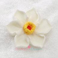"1-1/2"" Royal Icing Daffodil - Medium - White (quanity 10)"
