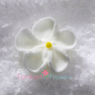 """1/2"""" Royal Icing Forget-Me-Not - Petite - White (quanity 20)"""