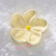 """7/8"""" Royal Icing Forget-Me-Not - Small - Ivory (quanity 20)"""