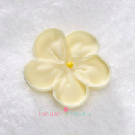 """1-1/2"""" Royal Icing Forget-Me-Not - Medium - Ivory (quanity 20)"""