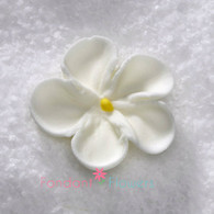 """1-1/2"""" Royal Icing Forget-Me-Not - Medium - White (quanity 20)"""