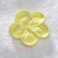 """1-1/2"""" Royal Icing Forget-Me-Not - Medium - Yellow (quanity 20)"""
