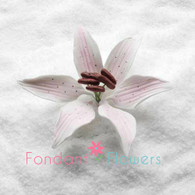 """3.5"""" Stargazer Lily - Large - Pink (Sold Individually)"""