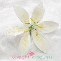 """4.5"""" Stargazer Lily - Large - Yellow (Sold Individually)"""