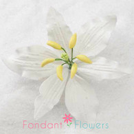 "3.5"" Casa Blanca Lily - Medium - White (Sold Individually)"