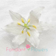 """4.5"""" Casa Blanca Lily - Large - White (Sold Individually)"""