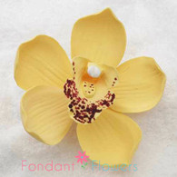 "3.5"" Cymbidium Orchid - Large - Artful Magic Yellow (Sold Individually)"