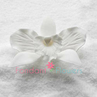 "3"" Cattleya Orchid - Medium - White (Sold Individually)"