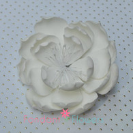 "3.5"" Dahlia Orchid - White (Sold Individually)"