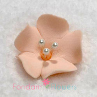 "1.25"" Fruit Blossom - Peach (10 per box)"