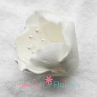 "1.5"" Tulip - White (Sold Individually)"