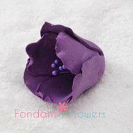 "1.5"" Tulip - Purple (Sold Individually)"