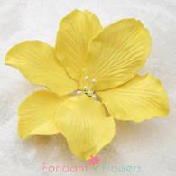 "3.5"" Gladiola - Large - Yellow (Sold Individually)"