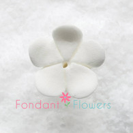 "1-1/8"" Round Stephanotis - Medium - White (10 per box)"