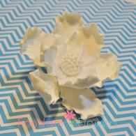 "4"" Elegant Anemone - White (Sold Individually)"