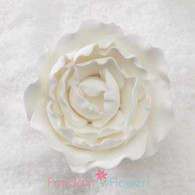 "2"" Ranunculus - Medium - White (Sold Individually)"