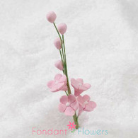 "2.5"" Forget-Me-Not Blossom Filler - Pink"