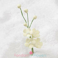 "2.5"" Forget-Me-Not Blossom Filler - Yellow"