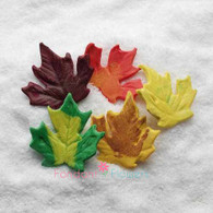 "1.5"" Autumn Leaves - Small - Assorted (10 per box)"