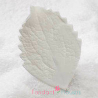 "3.5"" Hibiscus Leaves - XL - White w/ Wire (10 per box)"