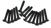 DHK 8381-119 B head screw-coarse thread(BB3*16mm) (16 pcs)