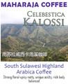 Celebestica kalossi maharaja coffee