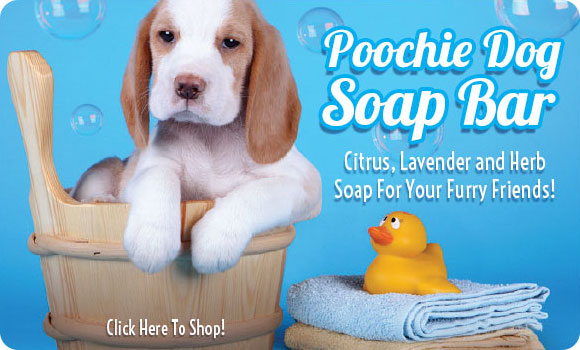 Poochie Soap