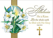 His Glory Easter Card - Style BCEC143