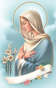 Holy Card | Mary Pray for Us | BCHG528