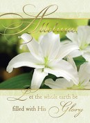 Alleluia For His Glory Box Greeting Card Easter BCEC443