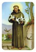 St Francis Magnet EGMAG32