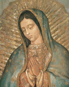 Our Lady of Guadalupe Print-Only EGSTELLA175