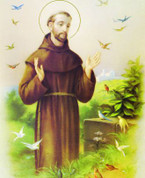 "St Francis of Assisi - Size 8"" x 10"""