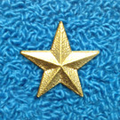 Captain Star Pin