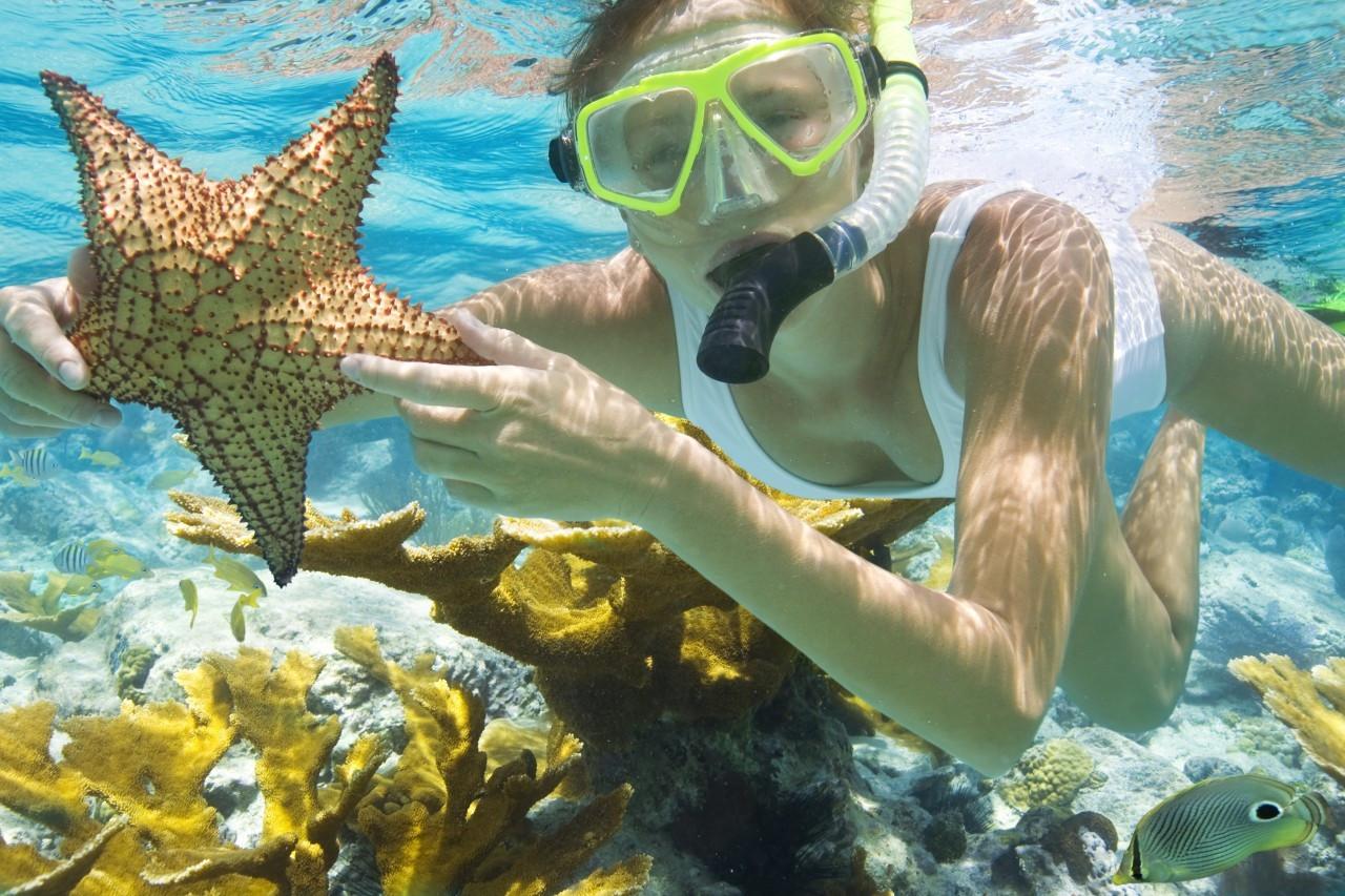 Snorkeling Tours In Miami Florida