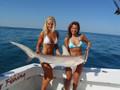 Miami Fishing Tours