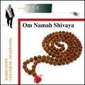 Om Namah Shivaya - MP3