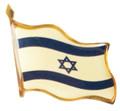 Lapel Flag Pin