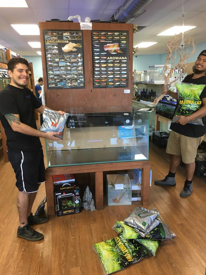 Aquascape Workshop At Pet Zone Tropical Fish