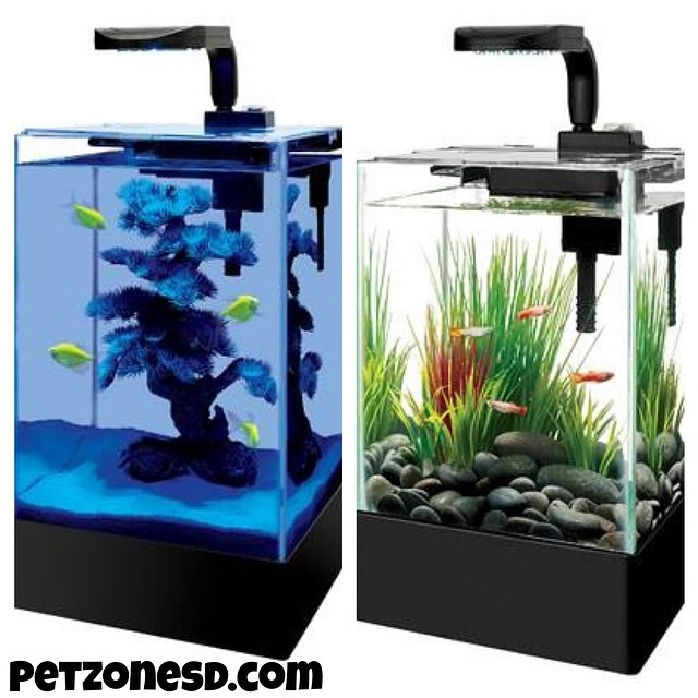 Newly arrived desktop aquarium nano tanks for your for Best fish for nano tank