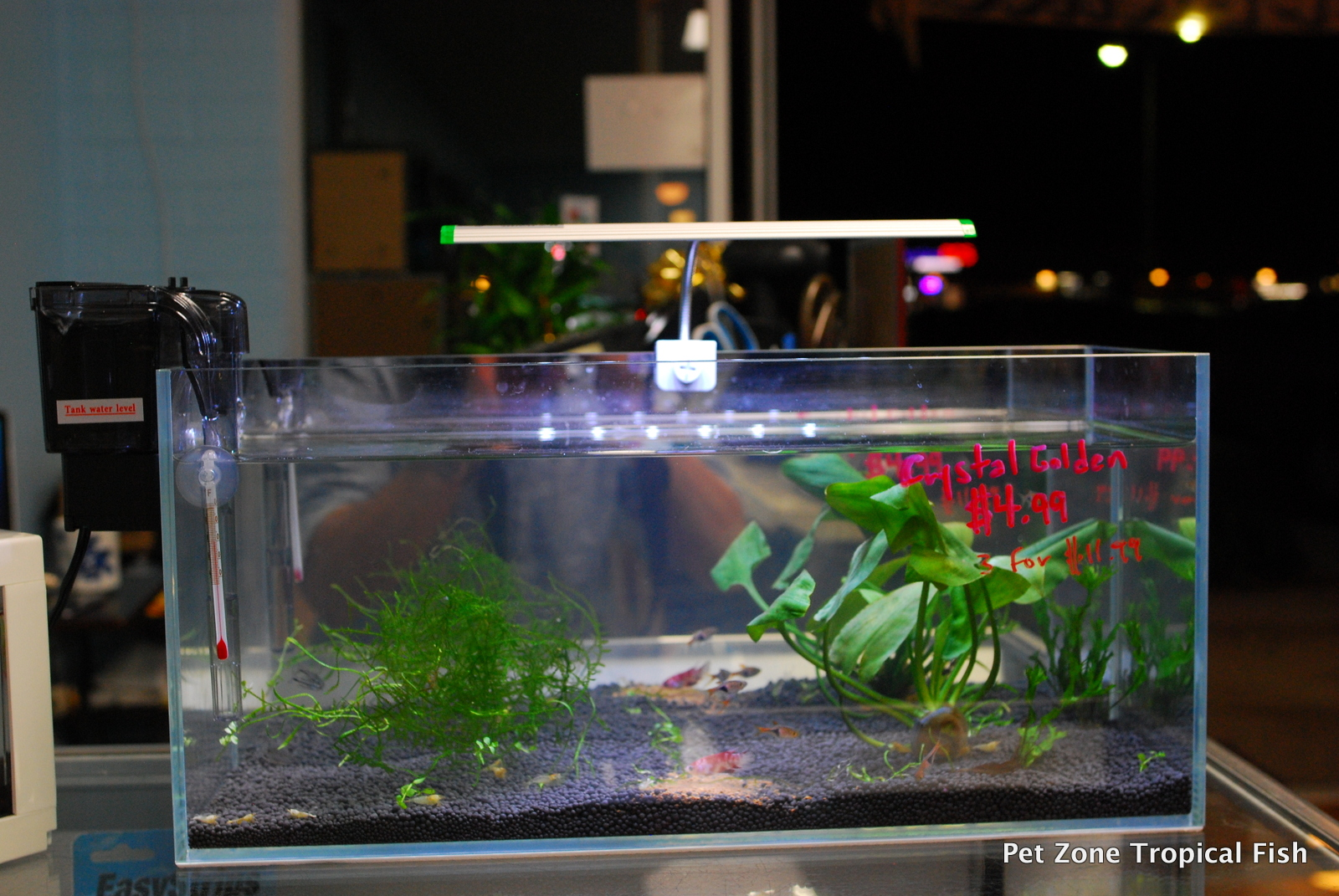 New arrivals of rimless nano tanks nano aquarium for Fish aquarium stores