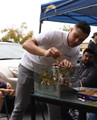 Hands-On Aquascaping Workshop