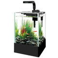 Aqueon Cue™ 5 Gallon LED Glass Desktop Aquarium