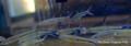 Red Tail Hemiodus Tetra