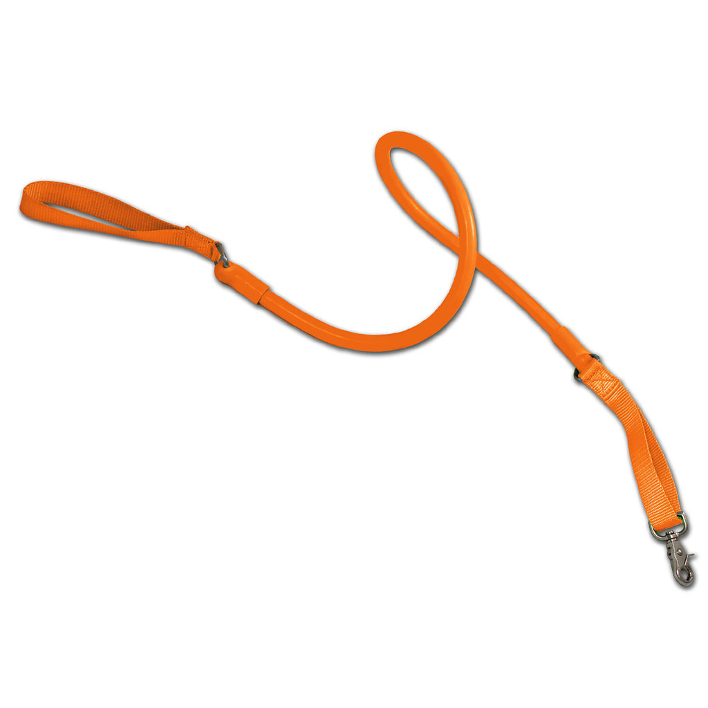 Best No Pull Leash for leash training puppy or dog