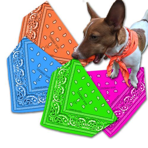 Wunder Dog Bandana